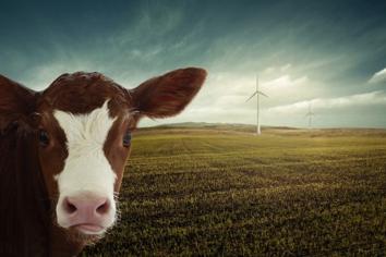 De kampioen CO2 uitstoot is…..